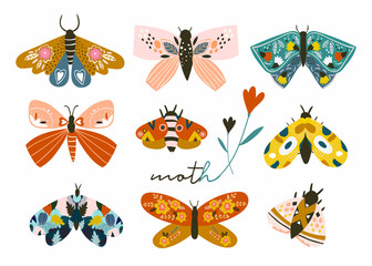 Hand drawn moth and butterflies. Colored vector set. All elements are isolated