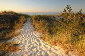 Wydmy na Wybrzeżu Bałtyku. Plaża w Dźwirzynie w letni słoneczny dzień.