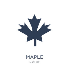 Maple icon. Trendy flat vector Maple icon on white background from nature collection