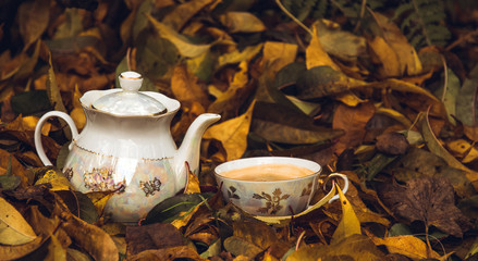 Tea pot, cup of hot tea and yellow autumn leaves