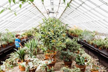 little boy walking in a greenhouse