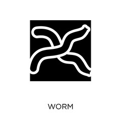 Worm icon. Worm symbol design from Agriculture, Farming and Gardening collection.