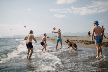 Group of friends playing beach volleyball with a German Shepherd