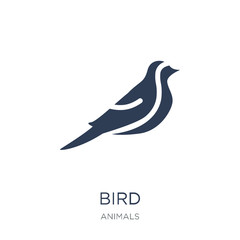 Bird icon. Trendy flat vector Bird icon on white background from animals collection