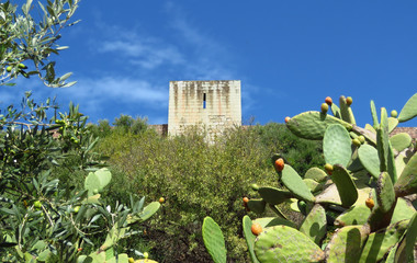 Tower of the medieval castle of Serravalle in Bosa dominating the green surroundings, Sardinia, Italy