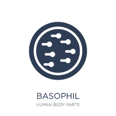 Basophil icon. Trendy flat vector Basophil icon on white background from Human Body Parts collection