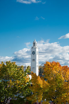Colorful maple tree with clock tower in Montreal
