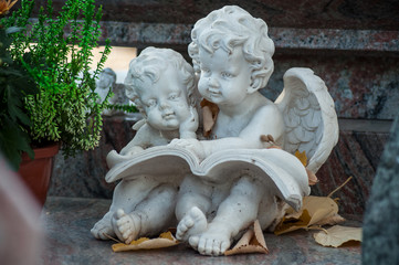 Closeup of two stoned angels on tomb in cemetery
