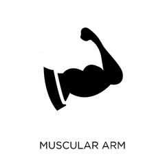 Muscular arm icon. Muscular arm symbol design from Human Body Parts collection. Simple element vector illustration. Can be used in web and mobile.