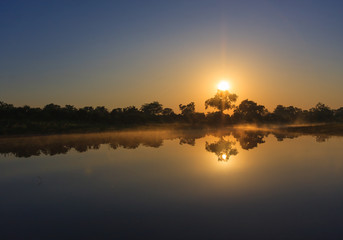 Sunrise over the waters with reflection of trees in the Okavango Delta, Botswana.