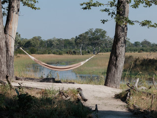 Hammock between trees with a view over a swamp in Botswana.