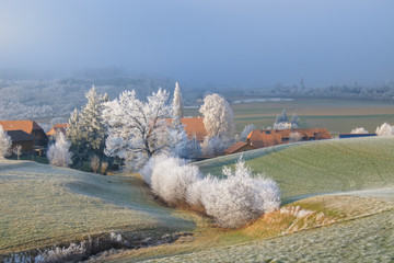 Frosty trees next to a farm in the countryside at Riedbach near Bern, Switzerland.