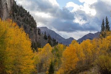 Autumn morning in the colorado mountains