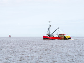 Fishing trawler at sea, Netherlands