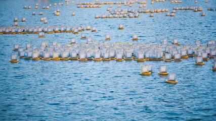The water lanterns