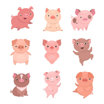 Cute piggies collection. Vector illustration of funny cartoon pigs in different poses. Isolated on white.