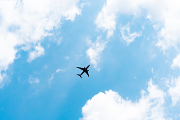 Wall Mural - 青空と飛行機