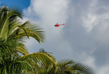 helicopter and palm trees on the Catalonia Bavaro beach in the Dominican Republic