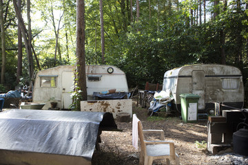 Abandon Caravans in the Forest
