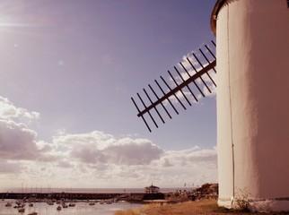 Aluminium Prints Mills moulin de jard-sur-mer en vendée,au bord de la mer
