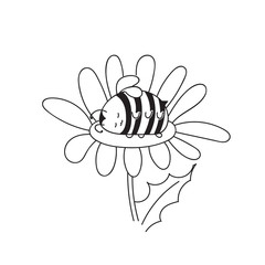 Cute little Bumblebee ink hand drawn sketch vector illustration. Happy fat sleeping in a flower. Bee icon. Print art sketch bees. Bee sign isolated on white background illustration