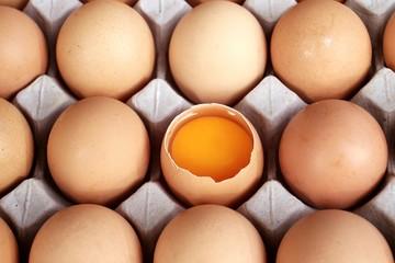 Egg in egg tray.