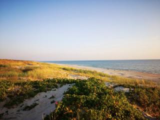Printed kitchen splashbacks Coast dunes