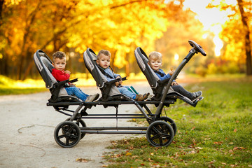 The happy triplets sit in a  baby stroller and eat cookies at autumn par