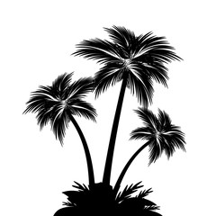 Palm tree silhouettes – for stock