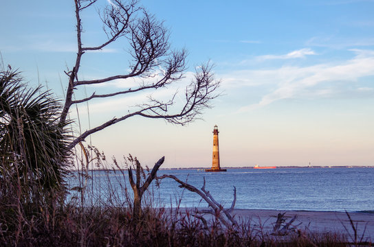 Morris Island Lighthouse in the distance, framed by bare trees at sunset, located in Folly Beach South Carolina.