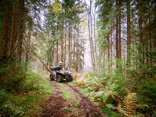 Off-road. A man is riding in an all-terrain vehicle through the forest. ATV. Travel through the forest. All-terrain vehicle. A man controls the ATV. Quad bike.