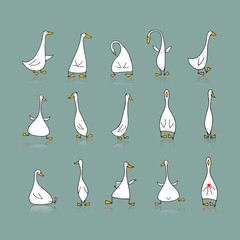 Funny goose set, sketch for your design