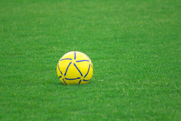 Yellow soccer ball on the lawn.