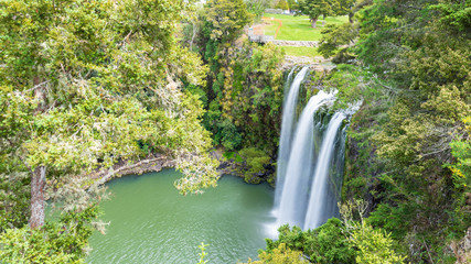 Scenic reserve surrounding the  famous Whangerei waterfall 26 m. high on the Hatea River