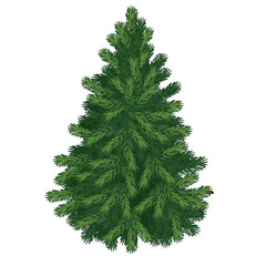 Christmas tree isolated on white background. Sketch for greeting card, festive poster or party invitations.The attributes of Christmas and New year. Vector illustration.