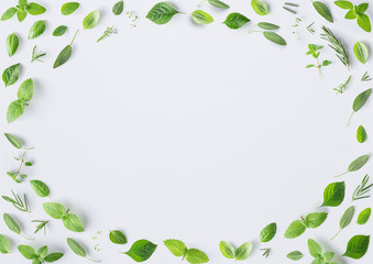 Seamless pattern of fresh herbs and spices basil, sage, rosemary, oregano, thyme, lemon balm, peppermint and mint setup with flat lay on white background