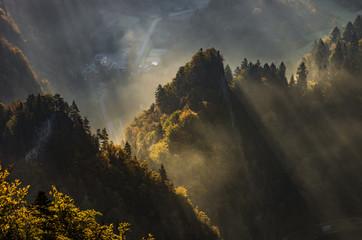 Foto op Plexiglas Oranje Misty mountain forest landscape in the autumn morning, Poland