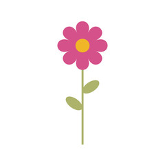 Simple vector of a pink and yellow daisy with a branch and green leaves.