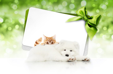 Fotomurales - merry christmas signboard or gift card for pet shop or vet clinic, white dog and ginger cat pets isolated on white card with green ribbon bow on blurred green xmas lights, copy space blank background
