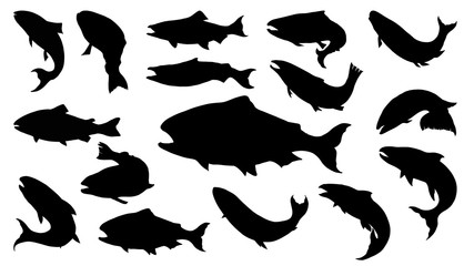 Set of salmon silhouette in line art style.Fish vector by hand drawing.Fish tattoo on white background.Black and white fish vector on white background.Salmon fish sketch for coloring book.