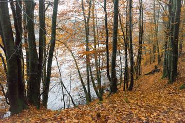 See im Herbst, Polen