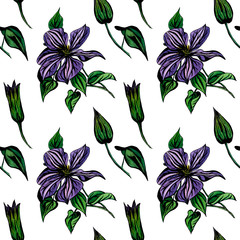 Watercolor seamless pattern with Clematis flowers