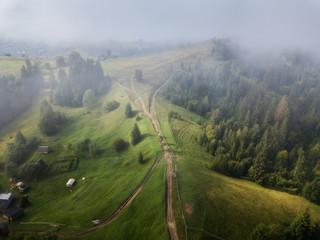 aerial veiw. foggy  alpine forest in mountaine. drone shot
