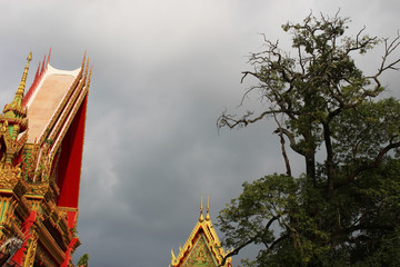 Abstract view of Buddhist temple rooves against a stormy cloudy sky and overlooked by a large spooky looking tree.
