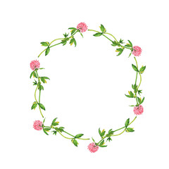 Pink clover flowers frame isolated on white background. Hand drawn watercolor illustration.