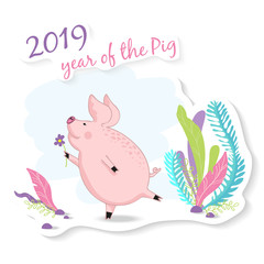 vector illustration of a little cute  pig with a flower in the meadow, symbol of the new 2019,cartoon design