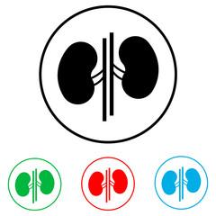 Kidneys Icon,  logo on a white background