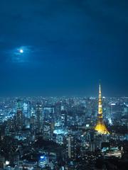 都市景観  東京 東京タワーなど