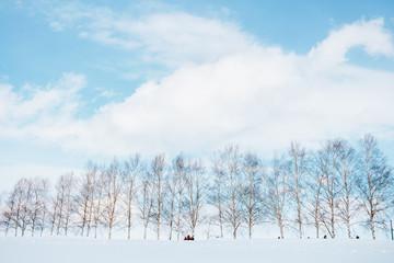 비에이 마일드세븐 언덕