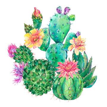 Exotic natural vintage watercolor blooming cactus greeting card